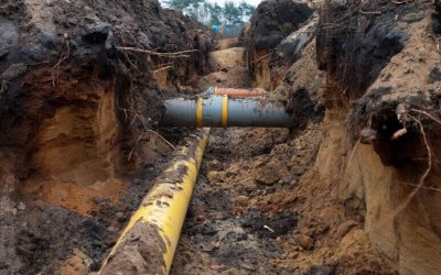Top 5 Signs You Have a Collapsed Sewer Line