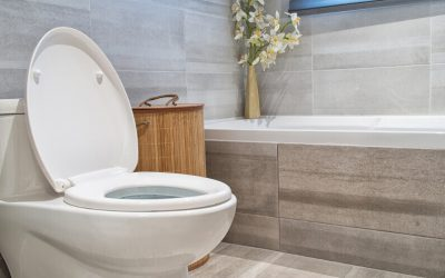 When Should You Call a Plumber for a Clogged Toilet?